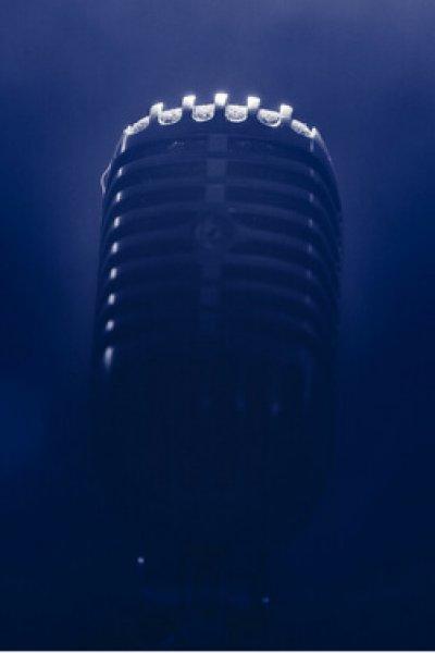 voix vecteur de communication